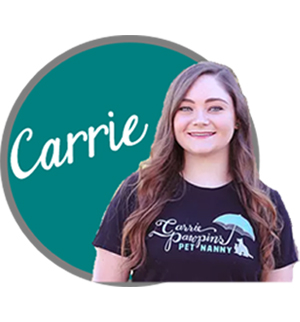 Carrie Seay Carrie Pawpins canine behavior training dog trianing feline behavior training pet sitter dog walker north phoenix, az scottsdale, az