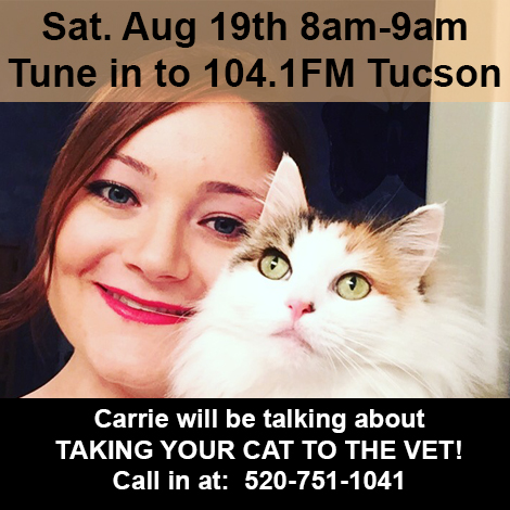 Tune in to 104.2FM Tucson featuring Carrie Seay!