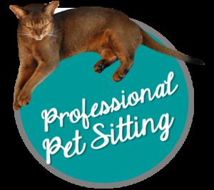 Professional pet sitting, cat sitting