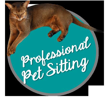 Professional pet sitting
